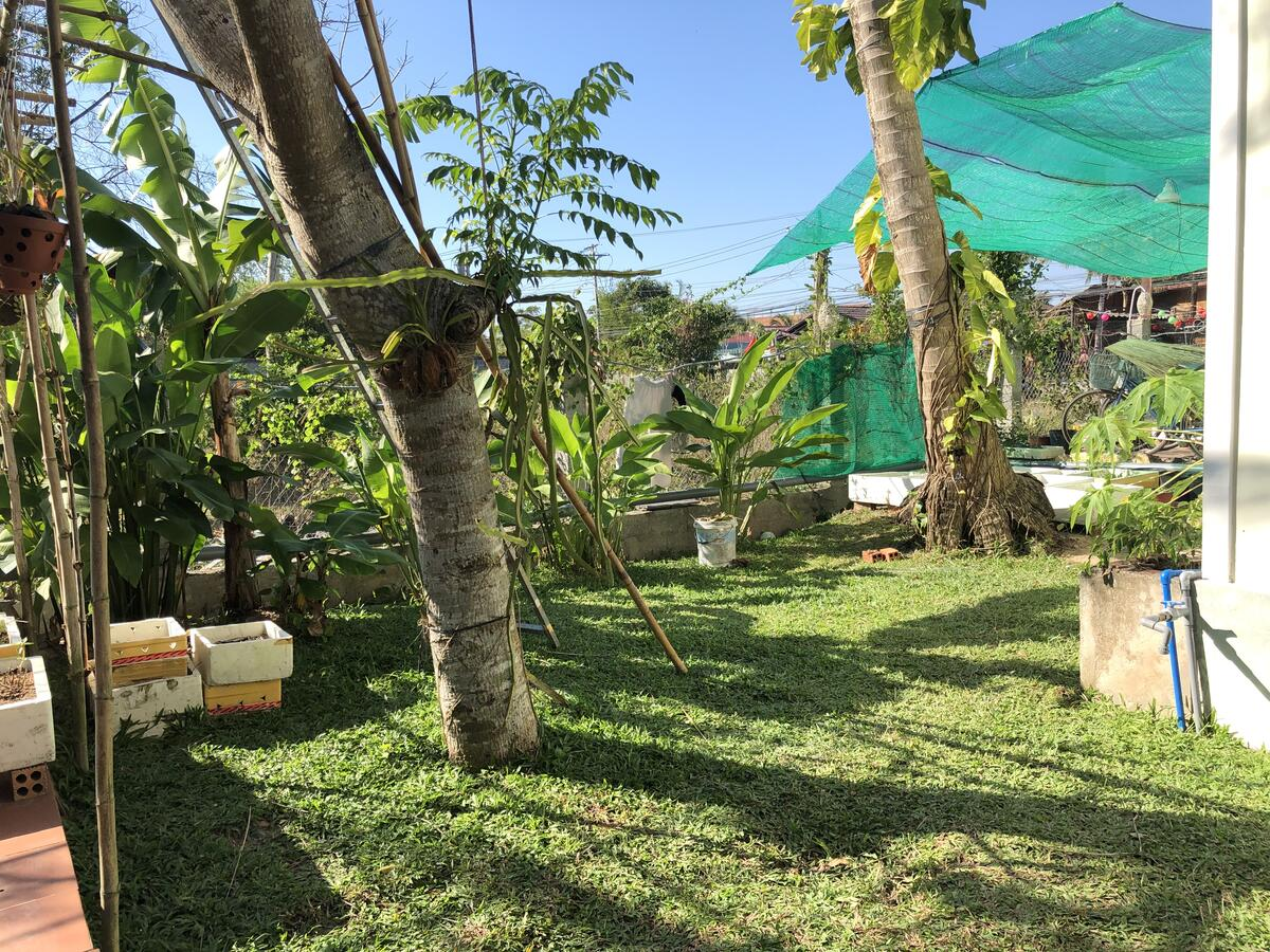 https://phuquoctrip.com/files/hotel/Tropical Garden/245290432.jpg
