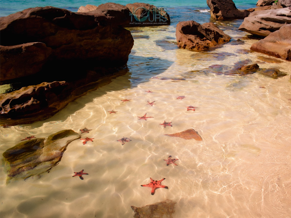 Land Tour 2: Discover The North - Kayaking & Starfish Beach Phu Quoc